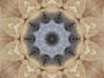 De Samenvatting van ogen & van Oren Royalty-vrije Stock Afbeelding