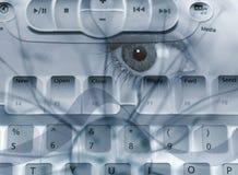 De samenvatting van Spyware royalty-vrije illustratie