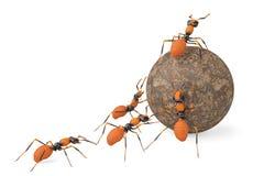 De samenwerking van het mierengroepswerk en steenbal 3D Illustratie vector illustratie