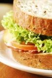 De sandwich Stock Afbeeldingen
