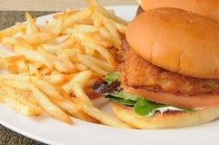 De sandwich en de gebraden gerechten van vissen Royalty-vrije Stock Afbeelding