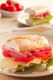 De sandwich van Baguette Royalty-vrije Stock Foto's