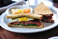 De Sandwich van BLT en van het Ei Stock Foto
