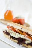 De sandwich van de kaas stock foto's
