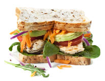 De Sandwich van de kip en van de Salade Stock Foto