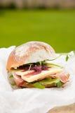 De sandwich van de lunch Royalty-vrije Stock Fotografie