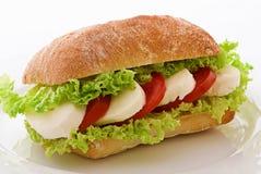 De Sandwich van de Mozarella van de tomaat stock afbeeldingen