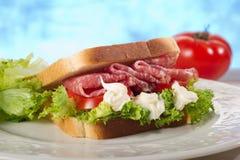 De sandwich van de salami royalty-vrije stock foto's