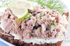 De sandwich van de tonijn royalty-vrije stock foto's