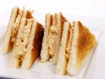 De sandwich van de tonijn Royalty-vrije Stock Afbeeldingen