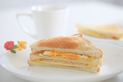 De sandwich van Durian Stock Afbeeldingen