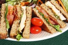 De sandwich van het clubhuis Stock Afbeeldingen