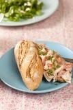 De sandwich van het varkensvlees stock foto