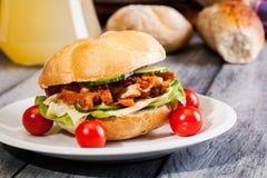 De sandwich van Kebab Stock Afbeelding