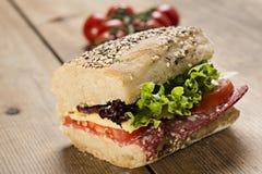 De Sandwich van Panini stock foto