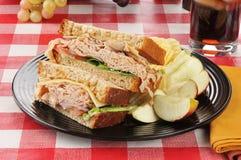 De sandwich van Turkije royalty-vrije stock foto's