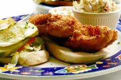 De Sandwich van vissen Stock Afbeeldingen