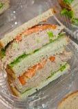 De sandwiches van tonijnvissen Stock Foto