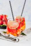 De sangria van de watermeloenzomer Royalty-vrije Stock Fotografie