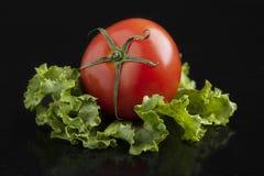De sappige tomaat ligt op saladebladeren stock foto