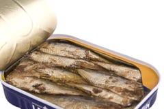 De sardines in a kunnen Royalty-vrije Stock Fotografie