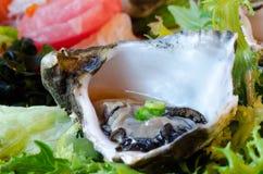 De Sashimi van de oester stock afbeeldingen
