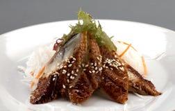 De sashimi van het voorgerecht Stock Afbeelding