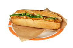De satay salade van de kip. Stock Fotografie