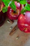 De saus en de ingrediënten van Apple Royalty-vrije Stock Foto's