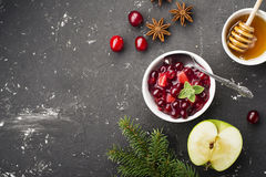 De saus van de huissaus van appelen en Amerikaanse veenbessen voor voorlegging aan diverse schotels het familiediner Het concept Royalty-vrije Stock Afbeeldingen