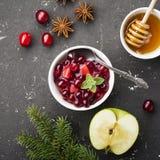 De saus van de huissaus van appelen en Amerikaanse veenbessen voor voorlegging aan diverse schotels het familiediner Het concept Stock Afbeelding