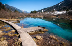 De Savalente, Zelenci, Slovenië Stock Foto