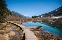 De Savalente, Zelenci, Slovenië Stock Afbeeldingen