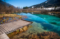 De Savalente, Zelenci, Slovenië Royalty-vrije Stock Afbeelding