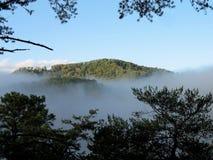 De Scène van de berg in Tennessee Stock Foto's