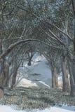 De Scène van de de wintersneeuw Stock Afbeeldingen