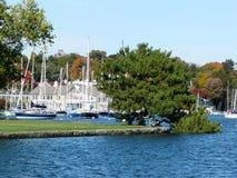 De scène van de haven Stock Foto's