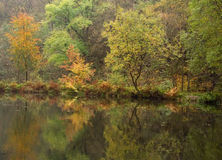 De scène van de herfst Royalty-vrije Stock Foto