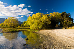 De scène van de herfst bij meerwanaka royalty-vrije stock afbeeldingen