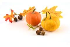 De scène van de herfst de kleurrijke achtergrond Royalty-vrije Stock Foto's