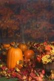 De scène van de herfst met pompoenen en gekleurde bladeren Royalty-vrije Stock Afbeeldingen