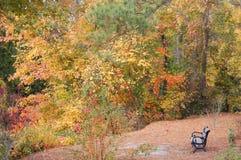 De scène van de herfst in Virginia royalty-vrije stock fotografie