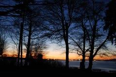 De scène van de nacht van Vancouver van de binnenstad Royalty-vrije Stock Foto's