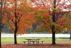 De Scène van de Picknick van de herfst royalty-vrije stock foto