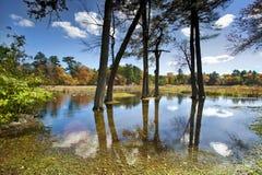 De scène van de rivier Royalty-vrije Stock Foto