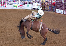 De scène van de rodeo. Royalty-vrije Stock Afbeelding