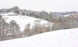 De scène van de sneeuw stock fotografie