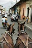 De Scène van de Straat van Granada Nicaragua Stock Foto's