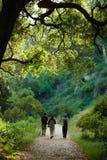 De scène van de wandeling Royalty-vrije Stock Foto's