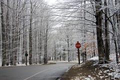 De Scène van de Weg van de winter Royalty-vrije Stock Afbeelding